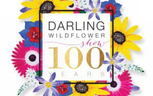 Darling Wildflower show