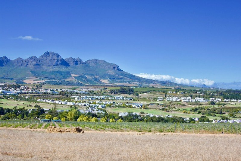 Stellenbosch in the Cape Winelands